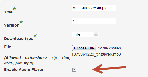 Insert the title and version of the music file that is ready to be downloaded from your website - Controlling Access to Music Files with Our WordPress Download Manager