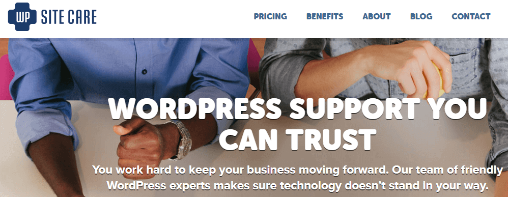 Paid Services - Where to Find Good WordPress Support