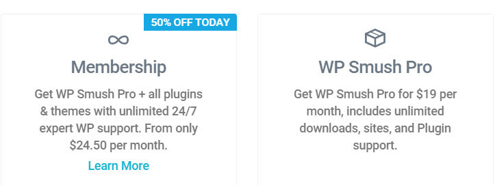 Options available to customers when purchasing a plugin through WPMUDEV