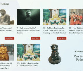 """Zen-sational"": She Uses a WordPress Plugin to Teach Buddhism"
