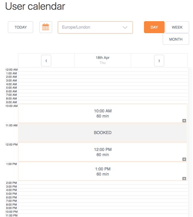 User Calendar Add-on - Calendar Day View
