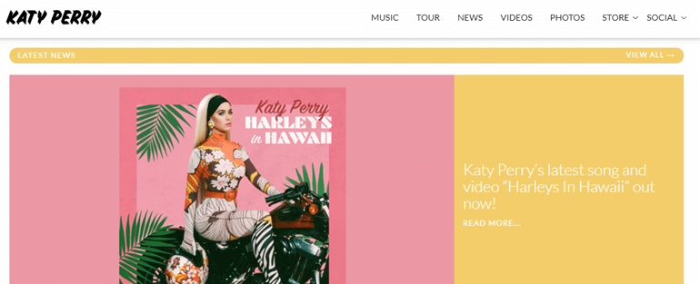 Katy Perry - Top 10 Types of Website You Can Create With WordPress in 2020
