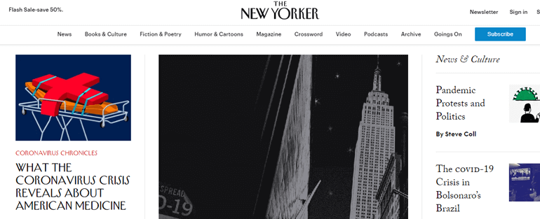 New Yorker Web - Top 10 Types of Website You Can Create With WordPress in 2020