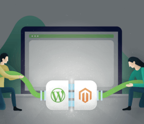Best Practices for Integrating WordPress and Magento in 2020