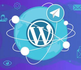 Improve Communication! Best Telegram WordPress Plugins