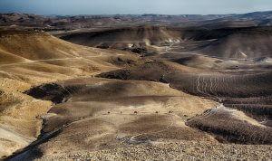 Course Catalog WordPress Plugin - Midbar Story Dead Sea