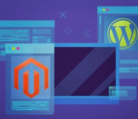 WordPress and Magento – Essential Integration TIps