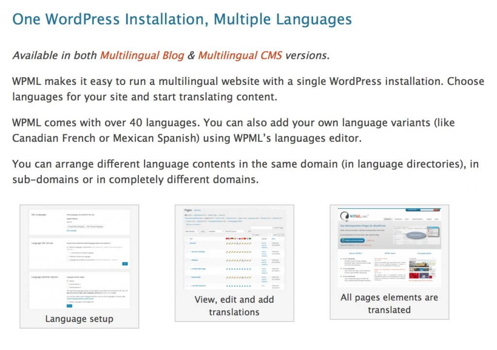 The WPML Multilingual Plugin - How a Glossary Helps (a Lot) Multilingual WordPress Websites
