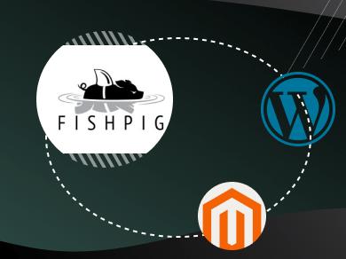 Magento WordPress Integration by Fishpig - Best Practices for Integrating WordPress and Magento in 2020