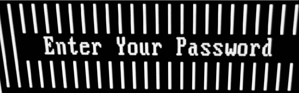 "Image of a back-and-white computer screen asking its user to ""enter your password""."