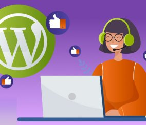 SEO, Cache and More – The Best Plugins to Blog With WordPress