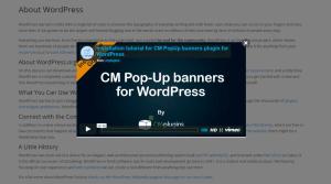 Video Popup Banner