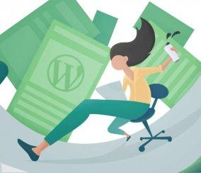 What Makes A Great WordPress Plugin?