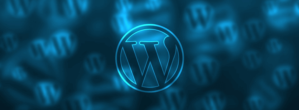 An image of the WordPress content management system logo.