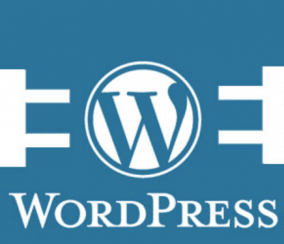 Top 10 Types of Website You Can Create With WordPress