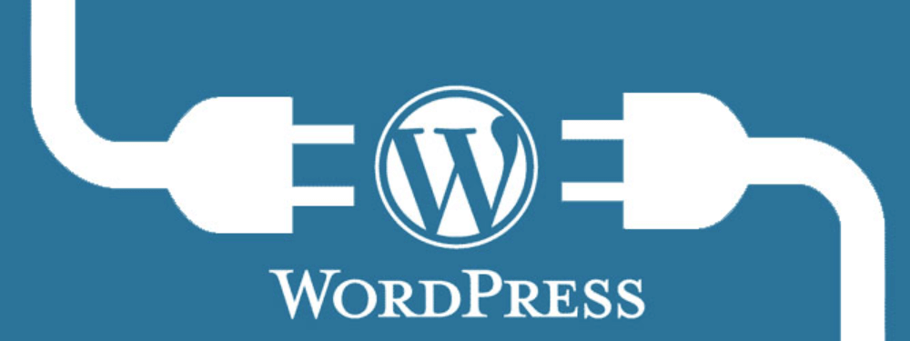 An image of two cords connecting to the WordPress logo.