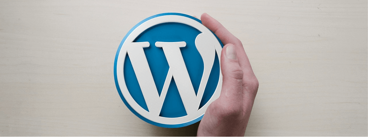 An image of a hand caressing the side of the WordPress logo