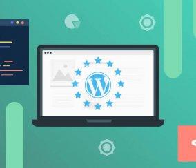 WordPress User Behavior Research: How People Choose Plugins