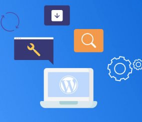 7 Best Mobile Optimization WordPress Plugins