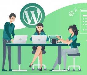 30 WordPress Plugins You Need in 2020