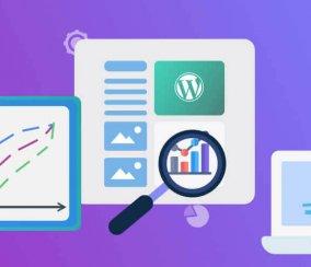 The Ultimate Guide to WordPress Statistics – 2021 Rundown