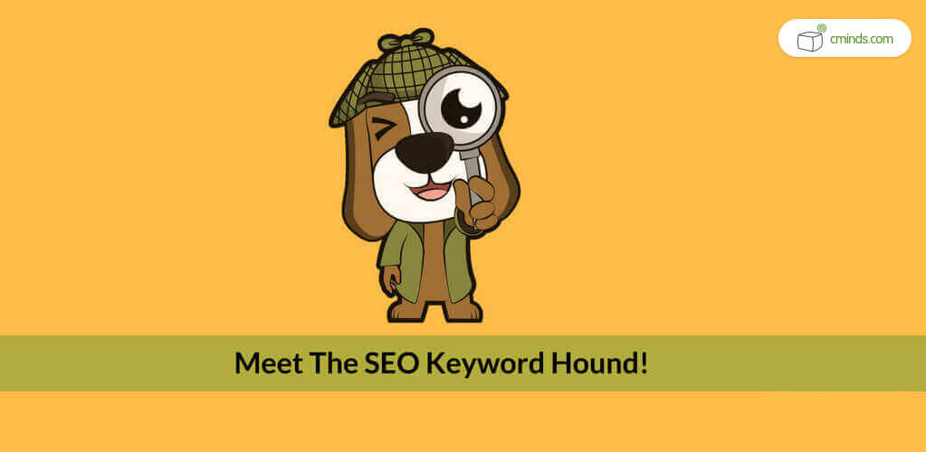 What is a WordPress SEO Plugin? And Do I Need One?