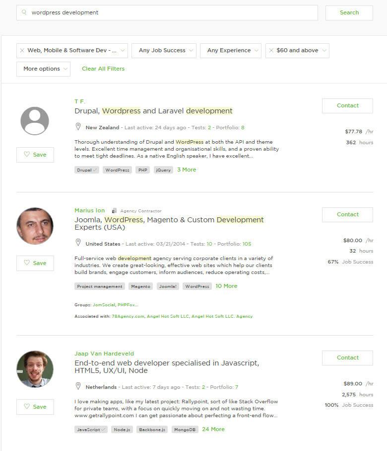 freelance wordpress developers- high price