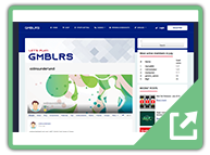 gmblrs (1) - User Submitted WordPress Plugin Example Sites