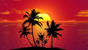 Tropical paradise Summer