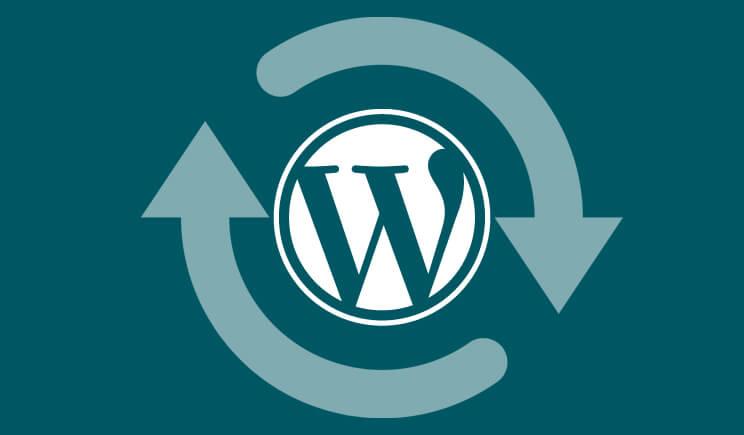 updating_wordpress_websites