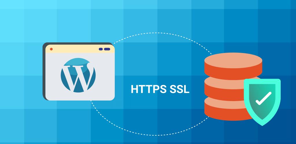 WordPress Plugins Safe - Creative Minds